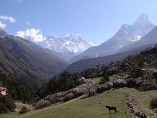 Everest View Trekking pictures